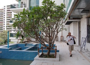 Constructing Swimming Pool, Buying a Condo in Bangkok Thailand, Southeast Asia