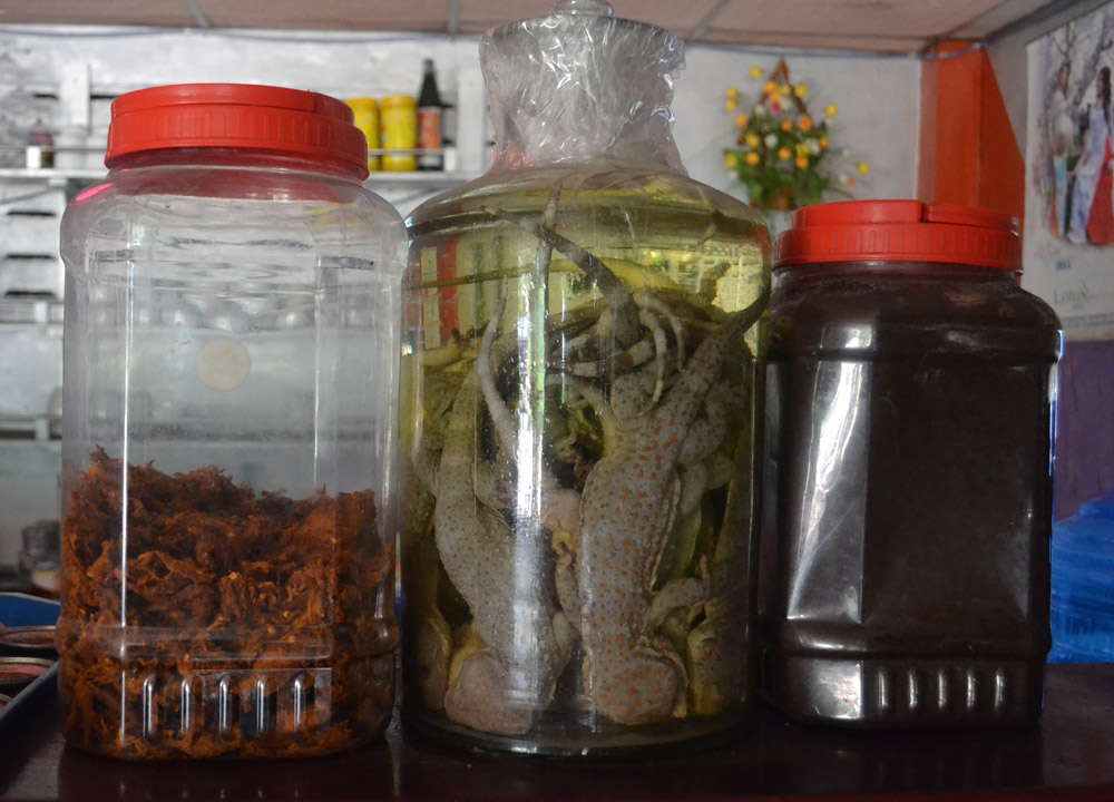Dead Lizards in Alcohol, Top 10 Lao Food, Eating in Laos, Southeast Asia