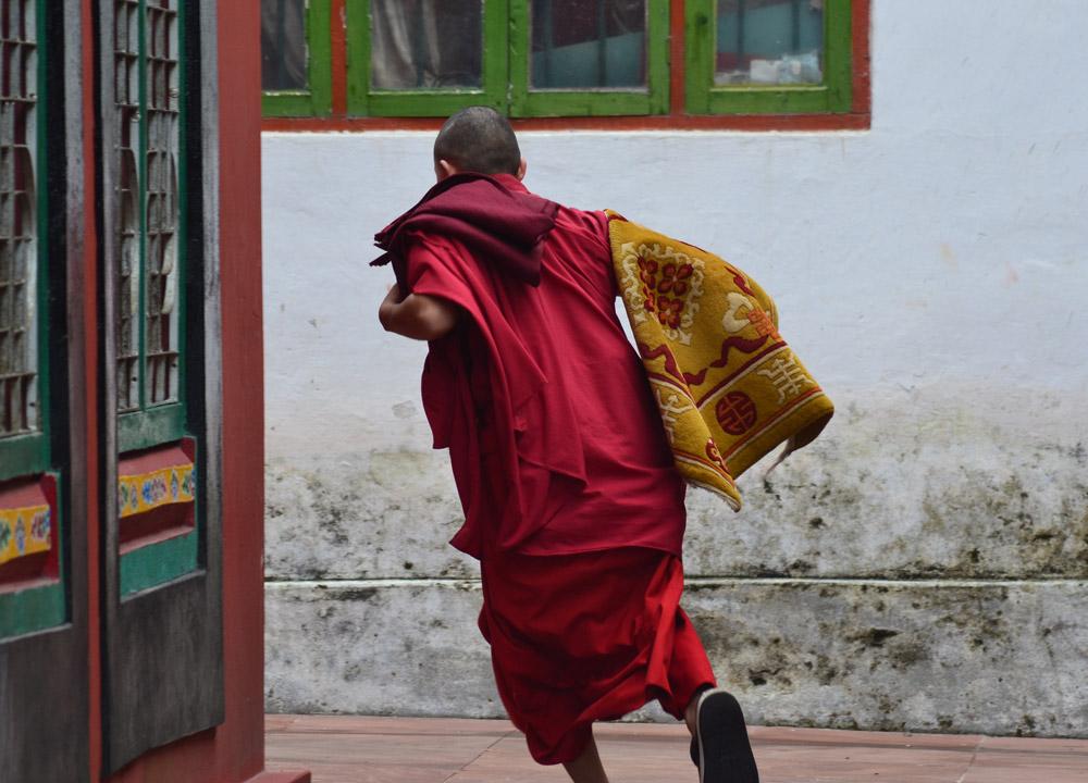 Young Monk Running, Rumtek Monastery, Gangtok Tour, Sikkim Himalayas, India