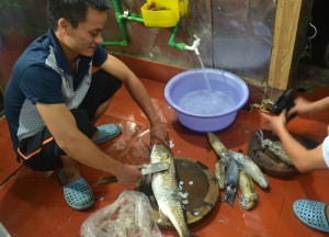 Fresh Seafood, Best Halong Bay Overnight Cruise Tours from Hanoi
