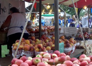 Lewiston Peach Festival, Driving Road Trip in America, New York State