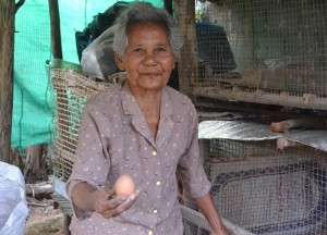 Collecting Eggs, Living in Thailand, Nang Rong, Simple life Rural Thailand