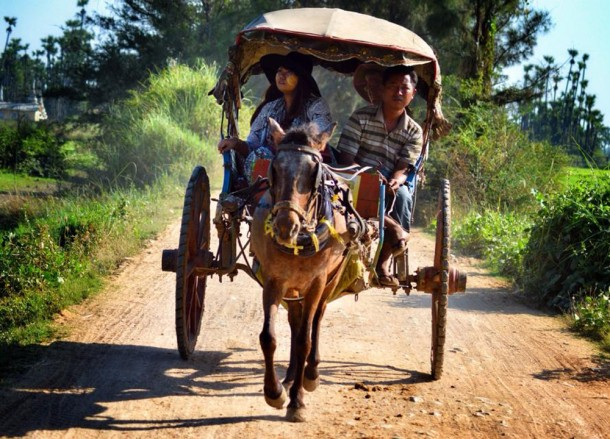 Horse and Cart at Inwa, Best mandalay day tour by taxi, Myanmar
