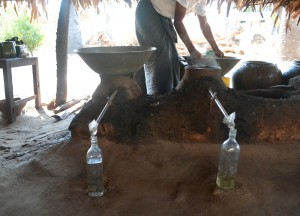 Distillation Cooling Toddy, Making Palm Wine in Burma, Alcohol from Palm Trees