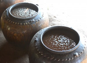 Fermentation Process for Making Palm Wine in Burma, Alcohol from Palm Trees