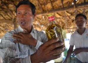 Rubbing Alcohol for Skincare, Making Palm Wine in Burma, Alcohol from Palm Trees