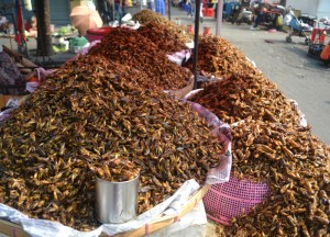 Mountains of Bugs (Fried), 19th Street Food in Yangon Chinatown