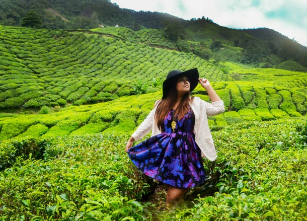 Boh Tea Plantation, British Tea Plantations in Asia, Hill Stations