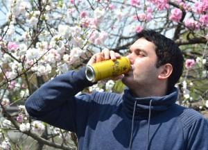 Beer Under Sakura, Best Beers and Alcohols in Asia