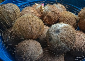 Coconut Shells, How to Open, Prepare and Eat Coconuts