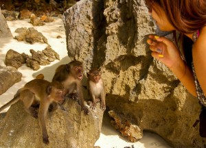 Monkey Beach, Escaping the Backpackers in Phuket, A Lapse in Luxury.