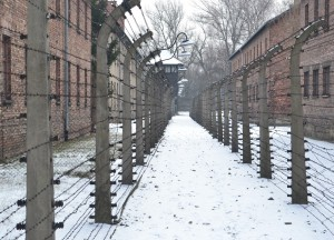 Barrier Fences Auschwitz, Winter Road Trip in East Central Europe