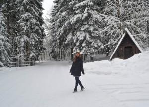 Snowy Forests, Winter Road Trip in East Central Europe