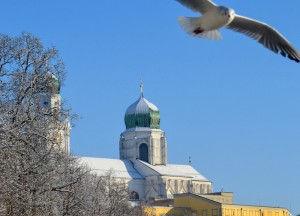 Sea Gulls, Winter Road Trip in East Central Europe