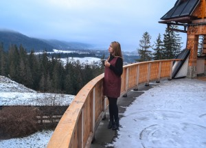Hotel with Views, Winter Road Trip in East Central Europe