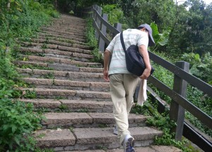 Walking Backwards, Best Views of Taipei 101, Elephant Mountain
