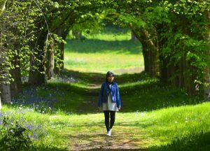 Castle Ward, Top Best Tourist Attractions in Northern Ireland