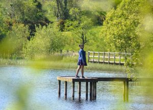 Lough Erne, Top Best Tourist Attractions in Northern Ireland