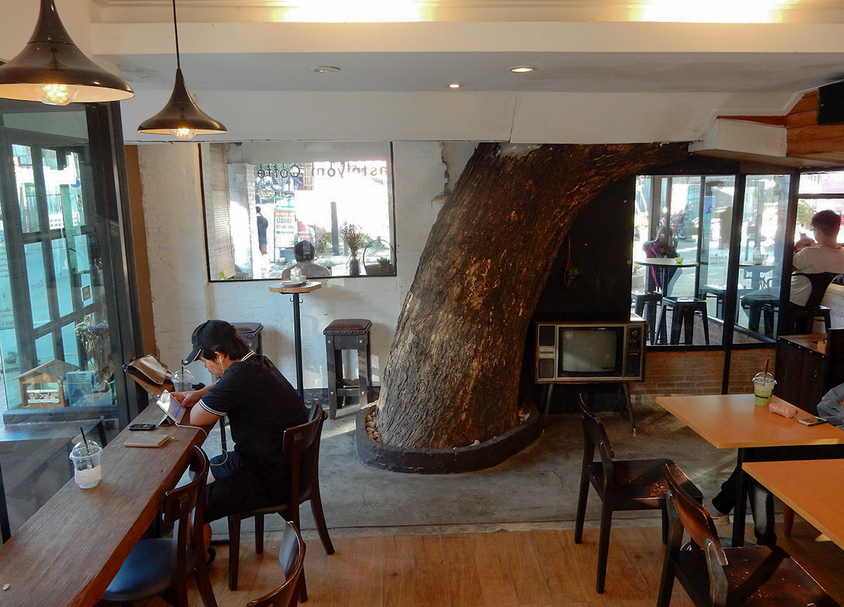 A Laid Back Life In Nimman Chiang Mai Live Less
