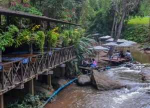 River Mae Rim, Top 10 Attractions in Chiang Mai Province Thailand