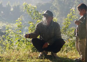 Smoking Local, Top 10 Attractions in Chiang Mai Province Thailand