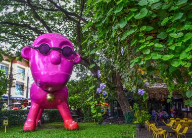 iberry Garden, Best Restaurants in Nimman Chiang Mai Nimmanhemin Road