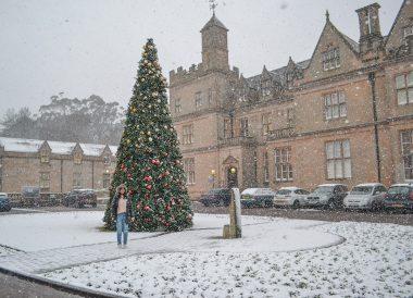 Bangor Town Hall, Top Best Tourist Attractions in Northern Ireland