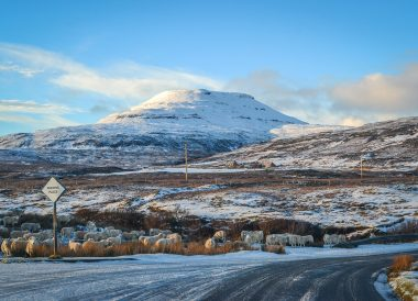 Sheep in Skye, Winter Road Trip in the Scottish Highlands Snow Scotland
